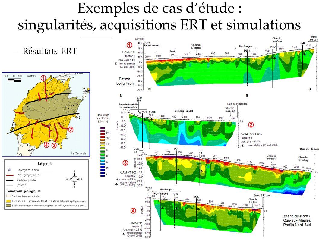 Exemples de cas d'étude : singularités, acquisitions ERT et simulations