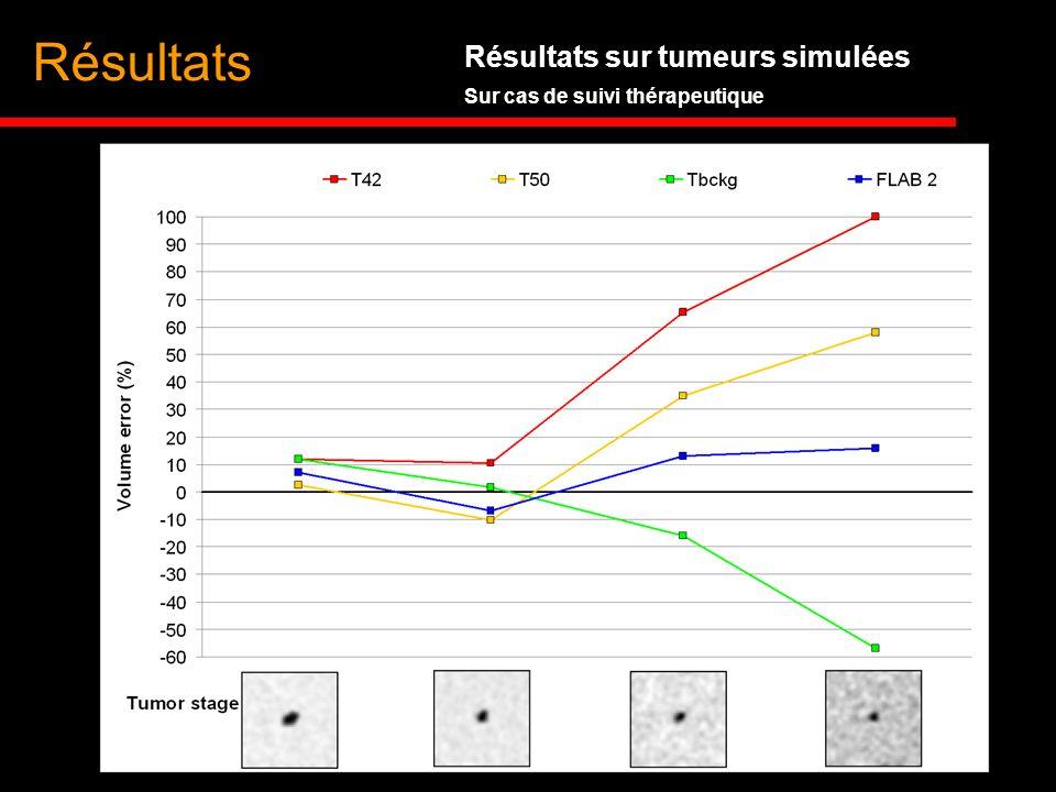 Résultats Résultats sur tumeurs simulées