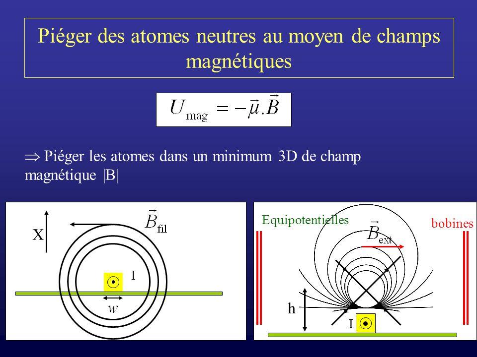 Piéger des atomes neutres au moyen de champs magnétiques