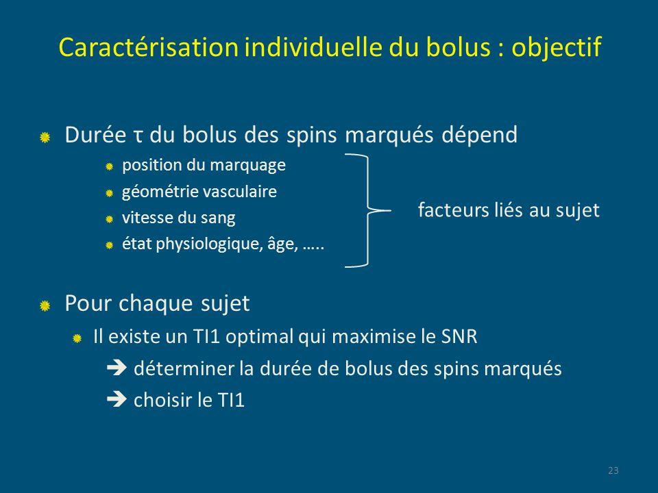 Caractérisation individuelle du bolus : objectif