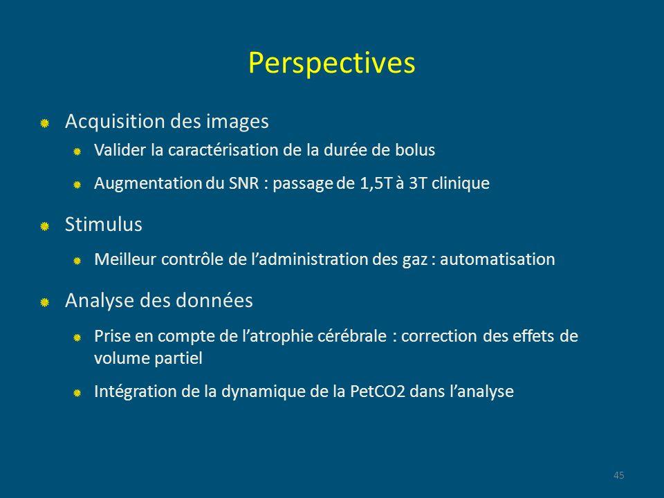 Perspectives Acquisition des images Stimulus Analyse des données