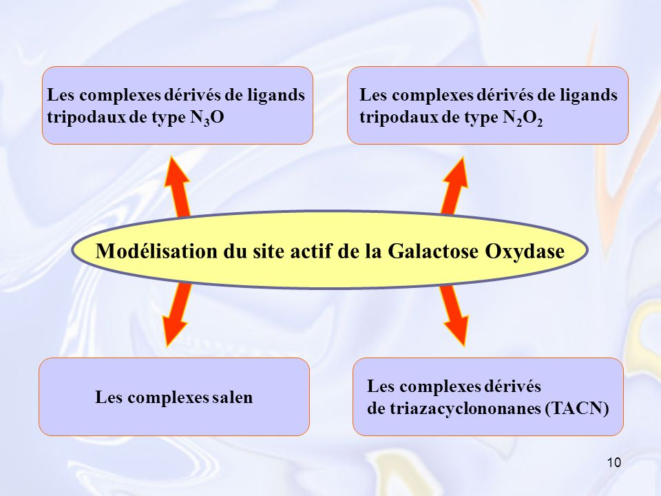 Modélisation du site actif de la Galactose Oxydase