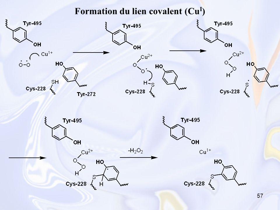 Formation du lien covalent (CuI)