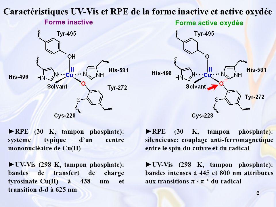 Caractéristiques UV-Vis et RPE de la forme inactive et active oxydée