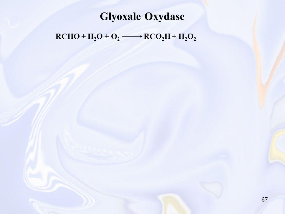 Glyoxale Oxydase RCHO + H2O + O2 RCO2H + H2O2
