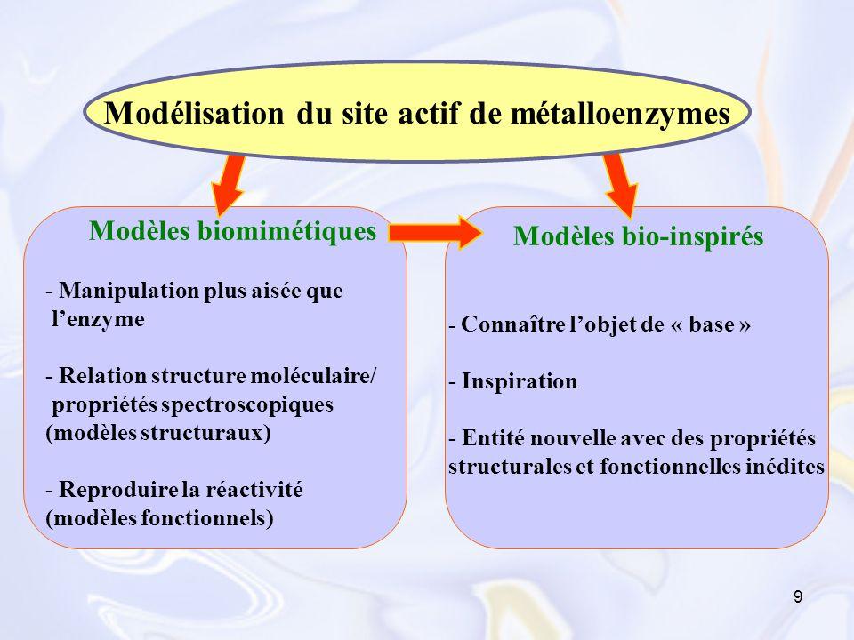 Modélisation du site actif de métalloenzymes
