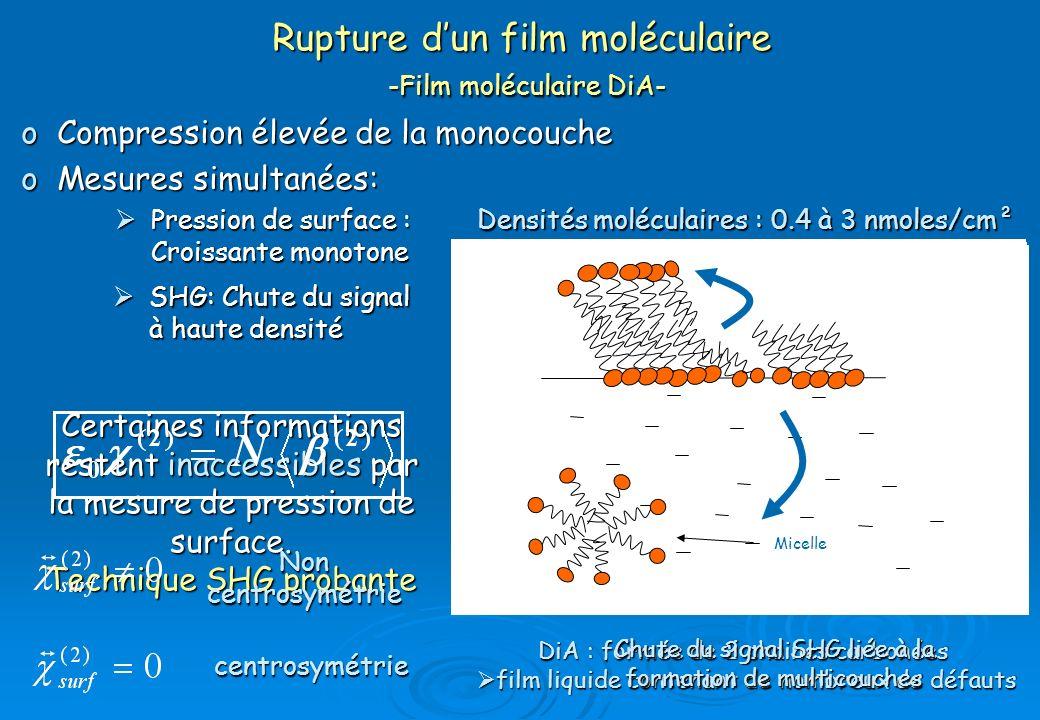 Rupture d'un film moléculaire -Film moléculaire DiA-