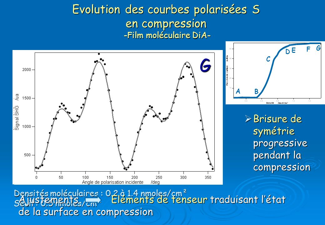 Evolution des courbes polarisées S en compression -Film moléculaire DiA-