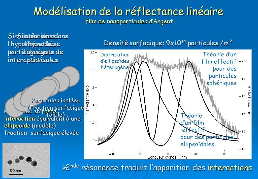 Modélisation de la réflectance linéaire -film de nanoparticules d'Argent-