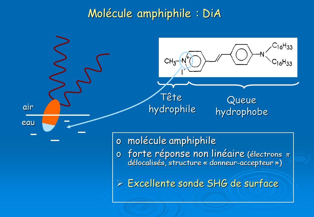 Molécule amphiphile : DiA