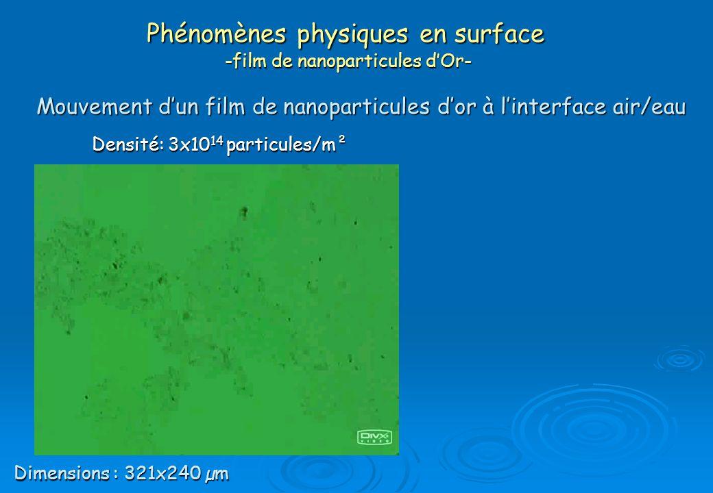 Phénomènes physiques en surface -film de nanoparticules d'Or-
