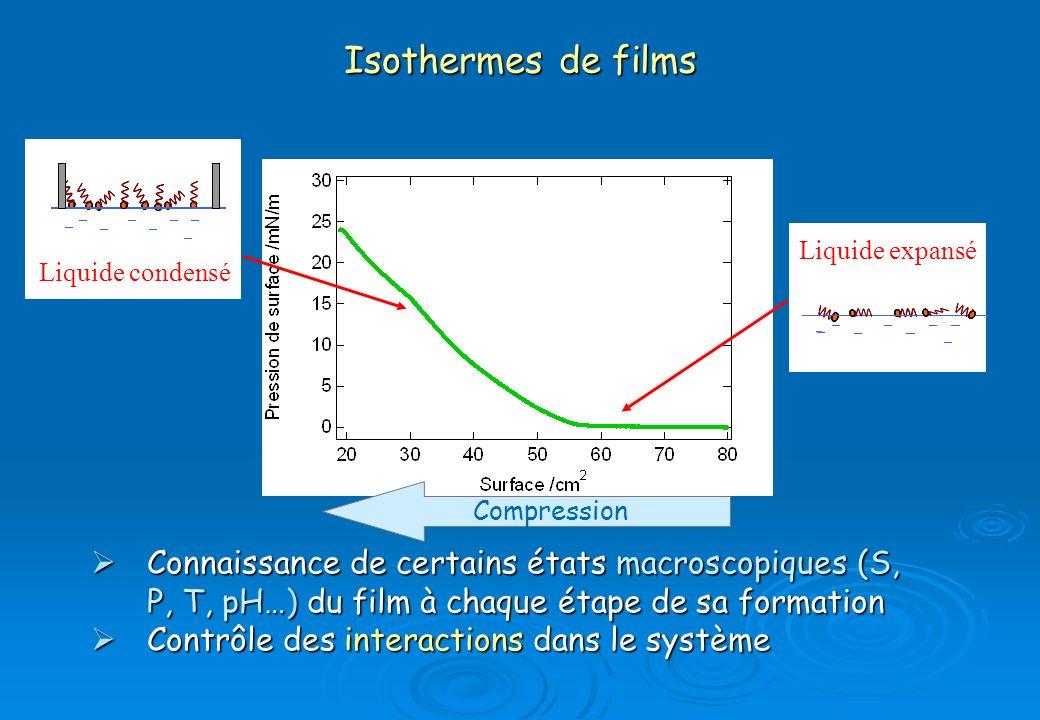 Isothermes de films Liquide expansé. Liquide condensé. compression. Compression.