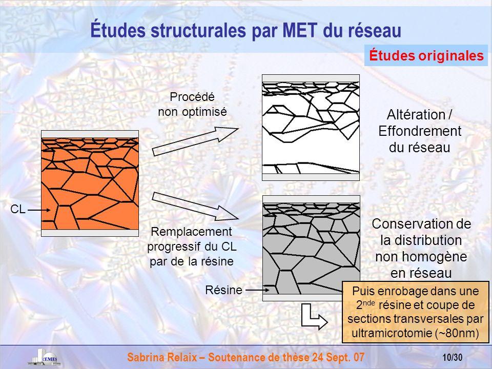 Études structurales par MET du réseau