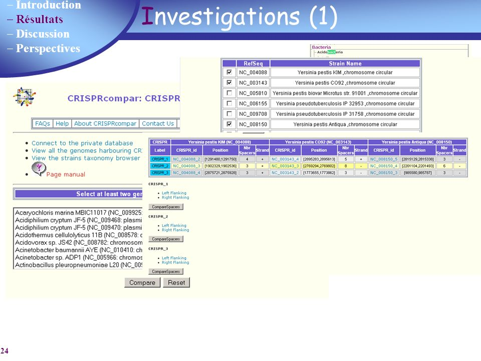 Investigations (1) Identification d'un (plusieurs) CRISPRs