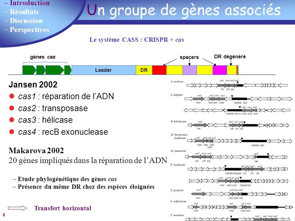 Un groupe de gènes associés