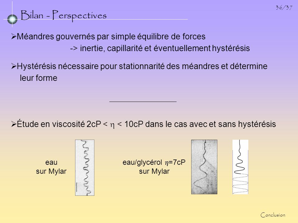 Bilan - Perspectives Méandres gouvernés par simple équilibre de forces