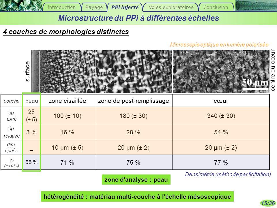Microstructure du PPi à différentes échelles