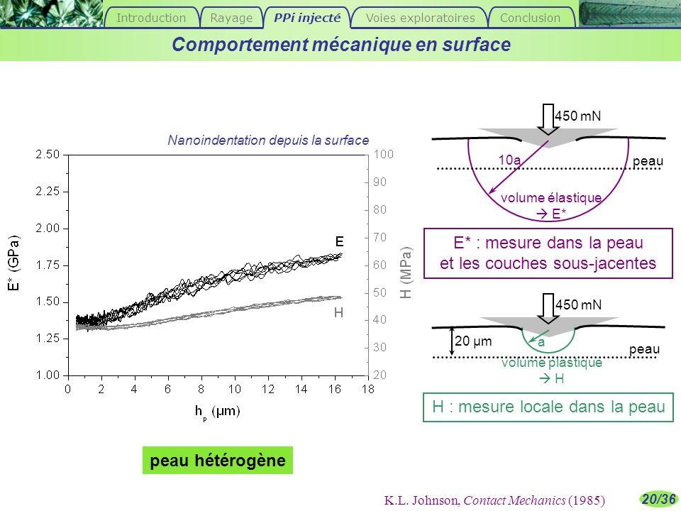 Comportement mécanique en surface