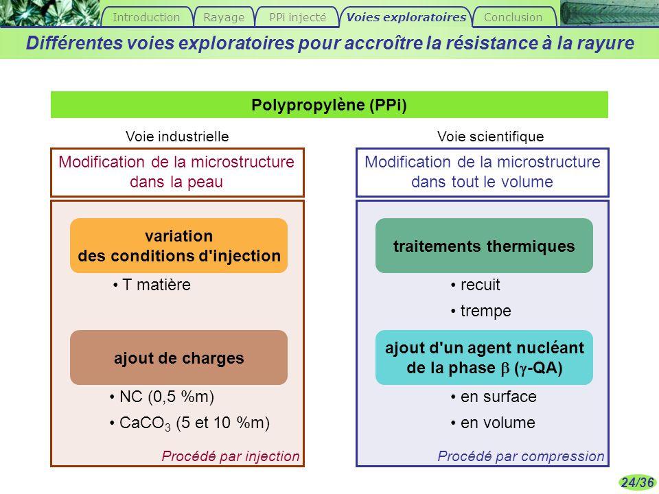 Introduction Rayage. PPi injecté. Voies exploratoires. Conclusion. Différentes voies exploratoires pour accroître la résistance à la rayure.