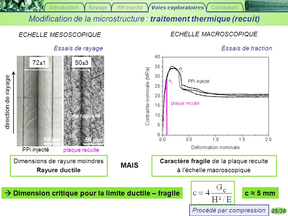  Dimension critique pour la limite ductile – fragile