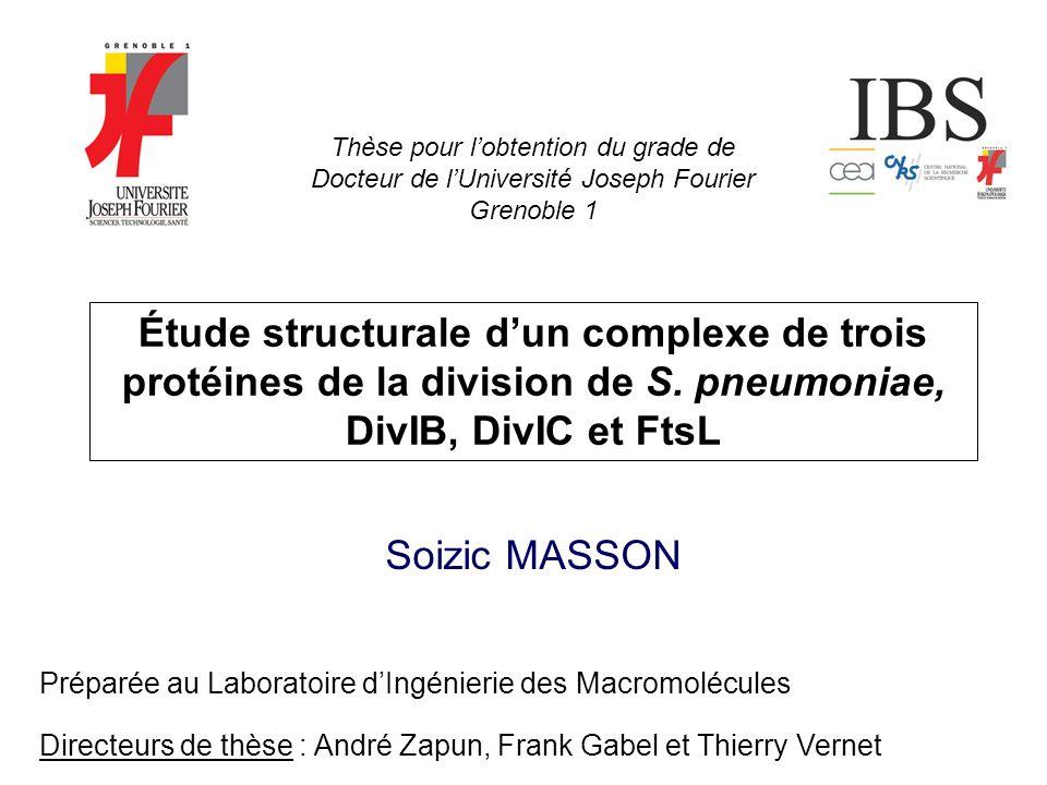 Thèse pour l'obtention du grade de Docteur de l'Université Joseph Fourier Grenoble 1