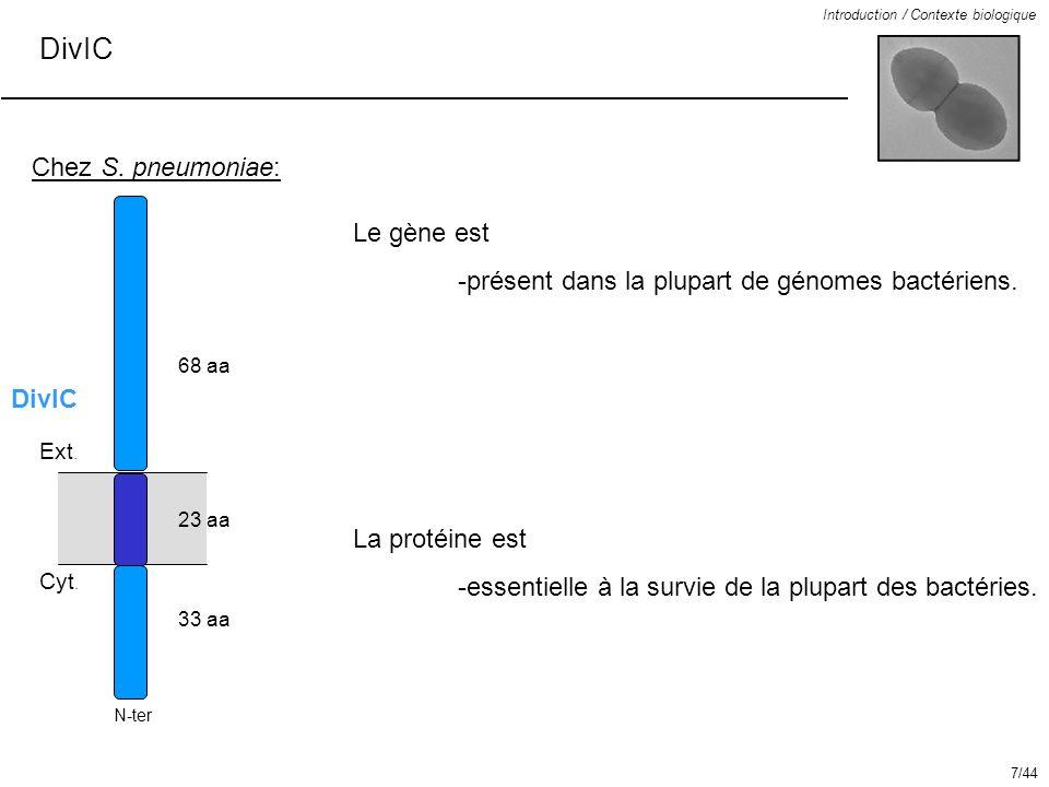 DivIC Chez S. pneumoniae: Le gène est