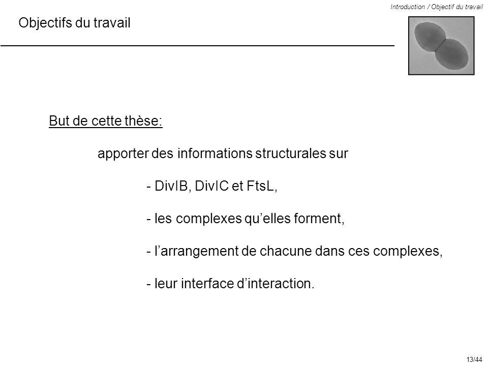apporter des informations structurales sur - DivIB, DivIC et FtsL,