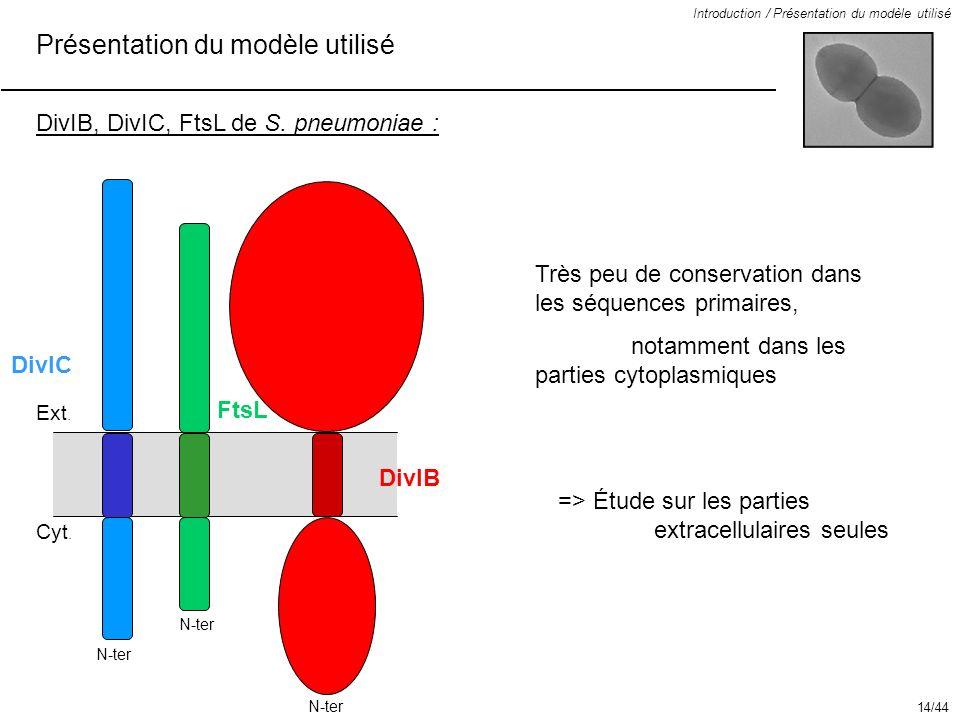 Présentation du modèle utilisé