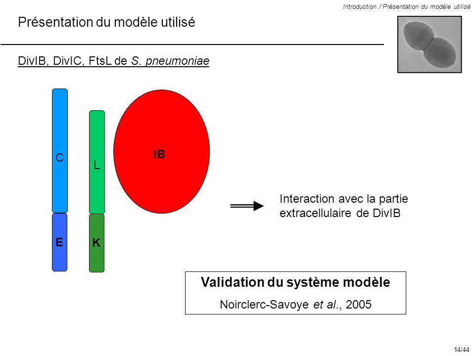 Validation du système modèle