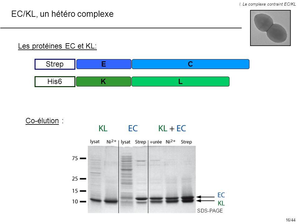 EC/KL, un hétéro complexe