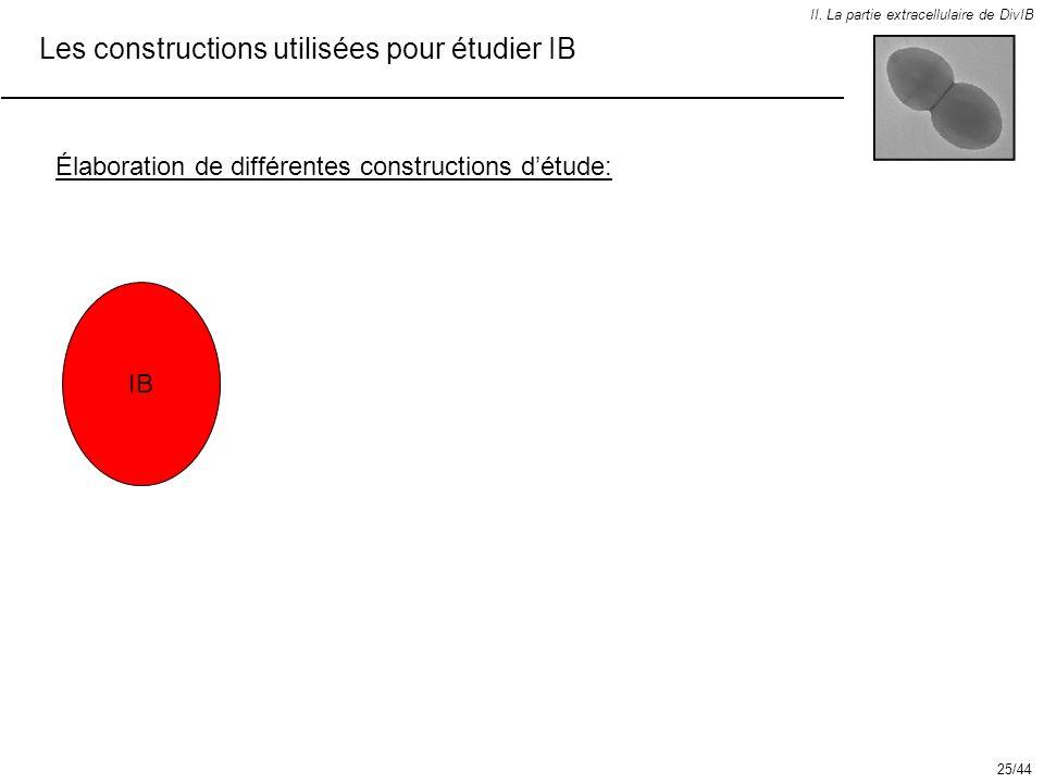 Les constructions utilisées pour étudier IB