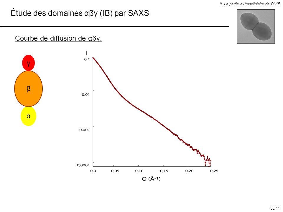 Étude des domaines αβγ (IB) par SAXS