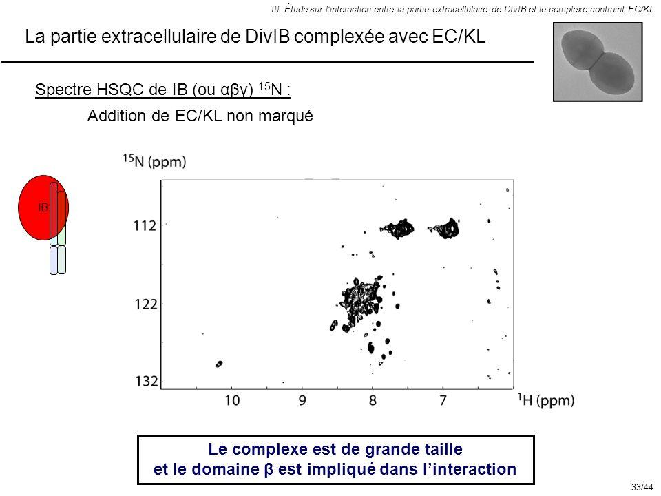 La partie extracellulaire de DivIB complexée avec EC/KL