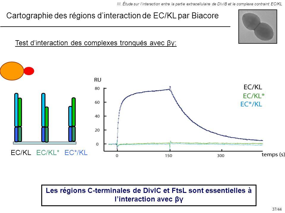 Cartographie des régions d'interaction de EC/KL par Biacore