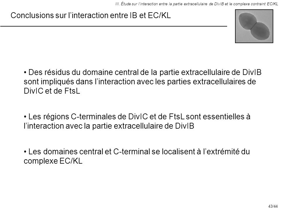 Conclusions sur l'interaction entre IB et EC/KL
