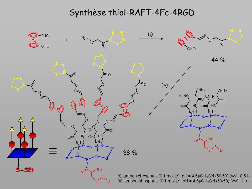Synthèse thiol-RAFT-4Fc-4RGD
