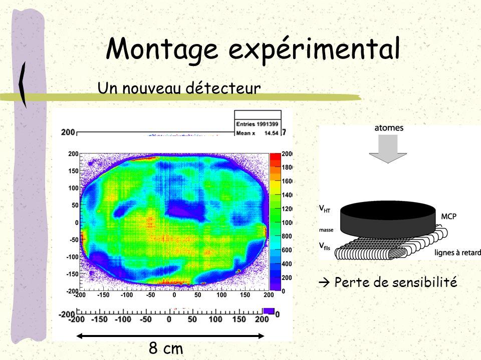 Montage expérimental Un nouveau détecteur 8 cm  Perte de sensibilité
