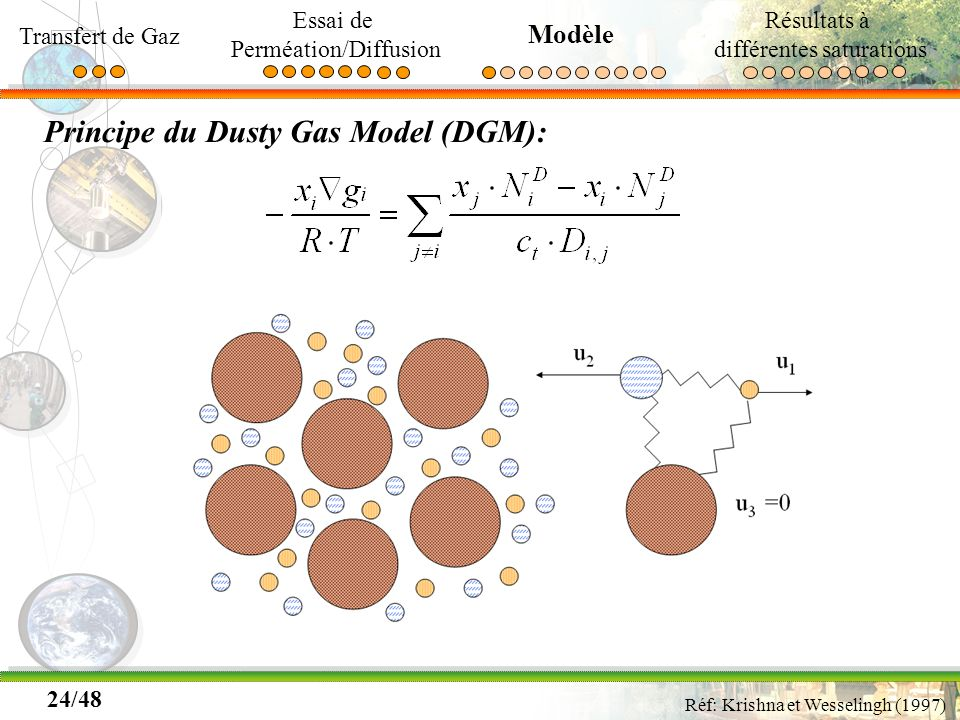 Principe du Dusty Gas Model (DGM):