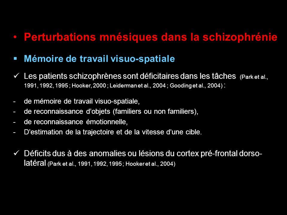 Perturbations mnésiques dans la schizophrénie
