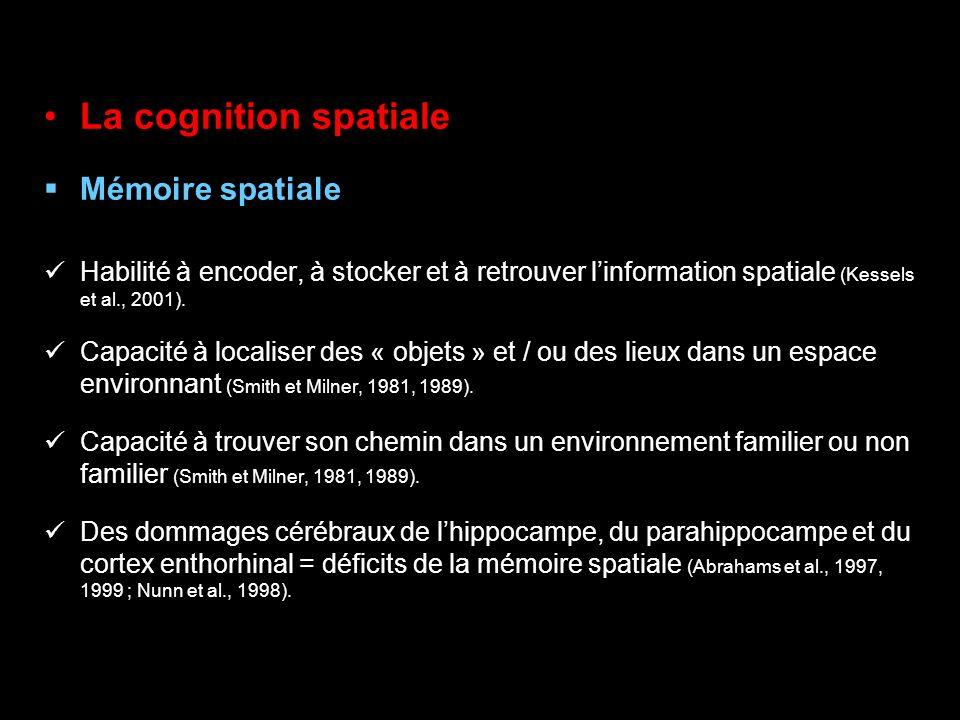 La cognition spatiale Mémoire spatiale