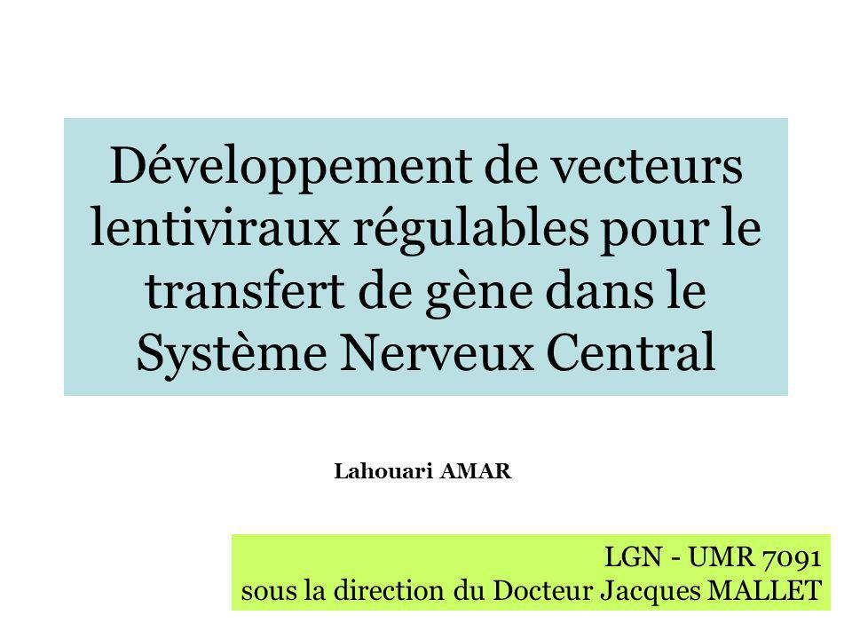 Développement de vecteurs lentiviraux régulables pour le transfert de gène dans le Système Nerveux Central