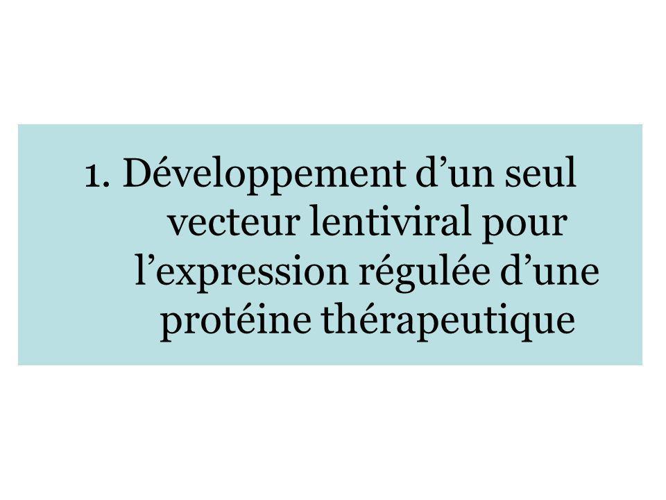 1. Développement d'un seul vecteur lentiviral pour l'expression régulée d'une protéine thérapeutique