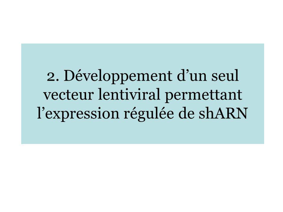 2. Développement d'un seul vecteur lentiviral permettant l'expression régulée de shARN
