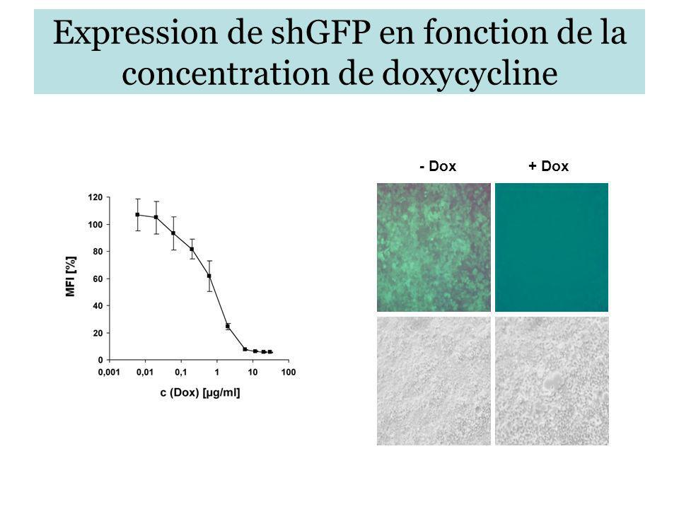 Expression de shGFP en fonction de la concentration de doxycycline