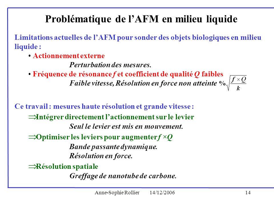 Problématique de l'AFM en milieu liquide