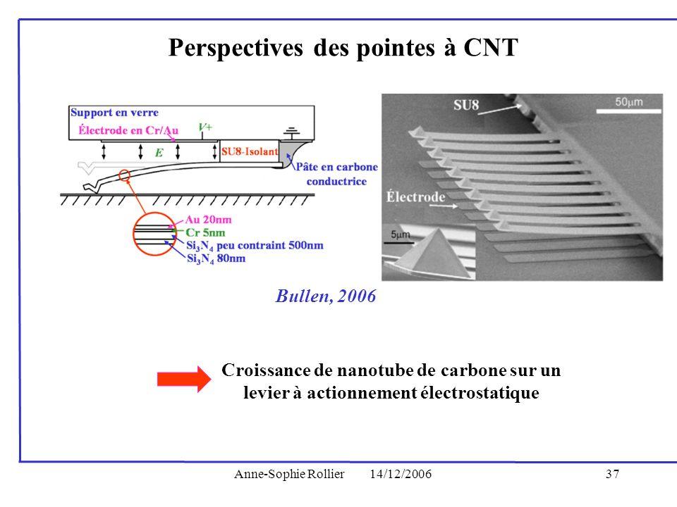 Perspectives des pointes à CNT