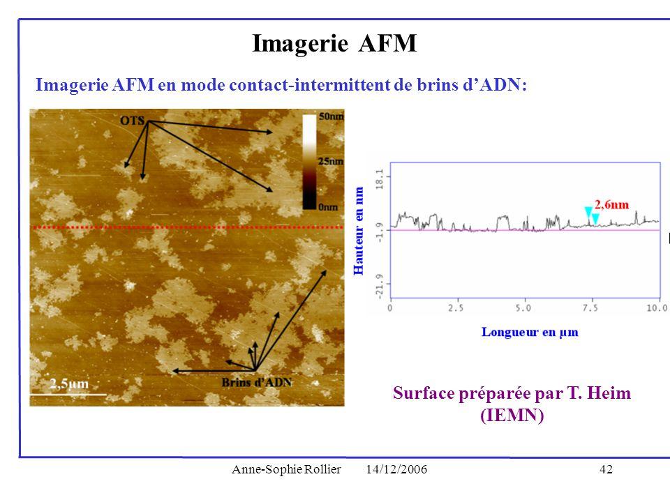 Surface préparée par T. Heim (IEMN)