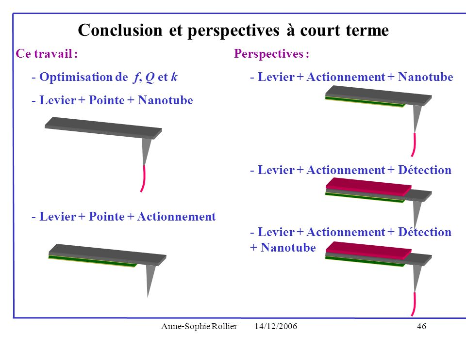 Conclusion et perspectives à court terme