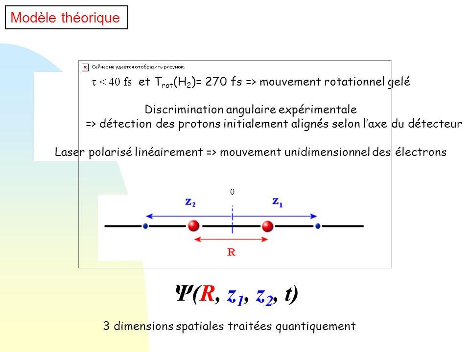 Ψ(R, z1, z2, t) Modèle théorique