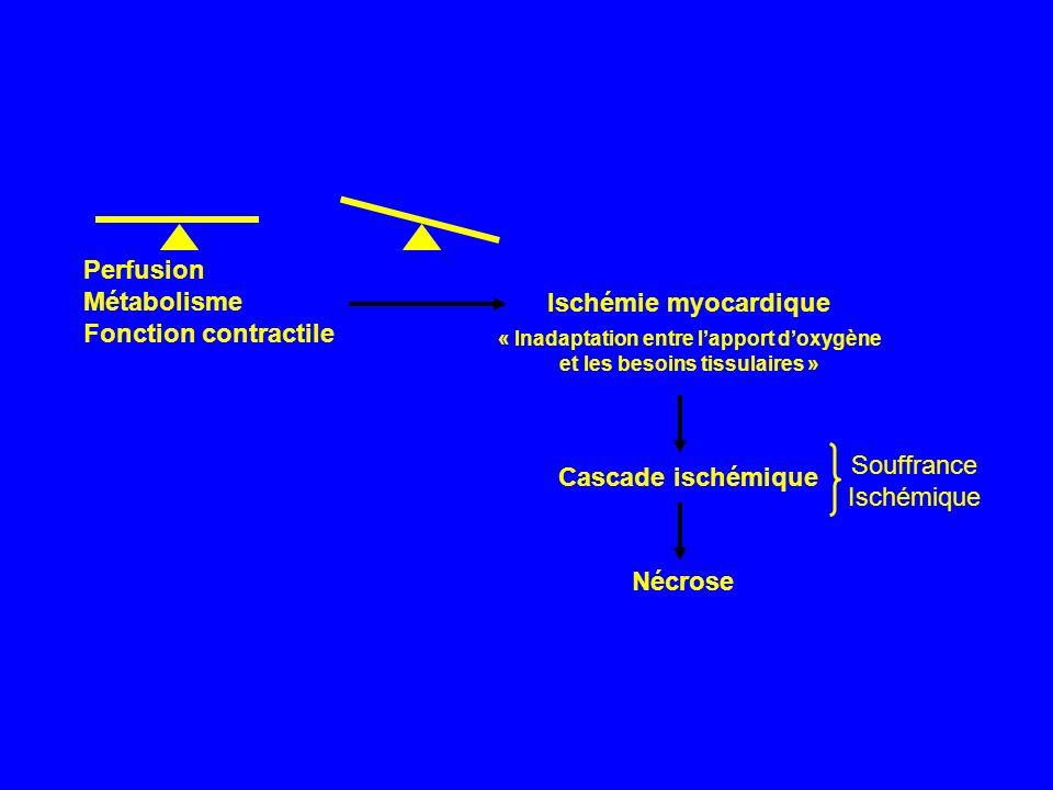 « Inadaptation entre l'apport d'oxygène et les besoins tissulaires »